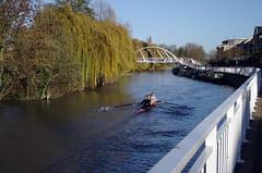 Autumn Rowers (MalB) Tags: cambridge pentax cam k5