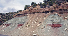 Tidwell Member of the Morrison Formation over Wanakah Formation (Jurassic; roadcut near Artists Point, Colorado National Monument, Colorado, USA) 4 (James St. John) Tags: monument point marine sandstone colorado formation national artists member morrison terrestrial jurassic shale marginal roadcut siltstone mudstone tidwell wanakah nonmarine mudshale