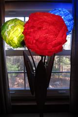 IMG_1819 (Dan Correia) Tags: house lamp shadows belchertown topv111 topv333 topv555 topv777 topv999 topv1111