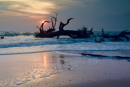Driftwood Beach at sunrise