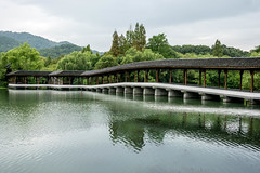 Timber Arch Lounge Bridge (Jixin YU) Tags: viewing natural landscape bridge nature water timberarchloungebridge outdoor lake westlake g20 tourism pond garden plant teahouse excursion tree travel beautiful fish roof leaf green lotus rain flower hangzhou