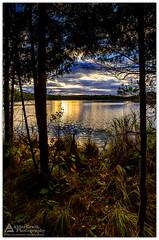 Little Fumee Lake 4 (Cory_ACP) Tags: michigan quinnesec upperpeninsula littlefumeelake sunset lake corychristensen aldercreekphotography
