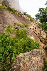 DSC_4114 (sergeysemendyaev) Tags: 2016 rio riodejaneiro brazil    pedradagavea mountain hiking trilha carrasqueira