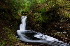 ALJ_8186 copy (alj70) Tags: keweenawcounty keweenawpeninsula michigan silvercreekfalls upperpeninsula fall waterfalls