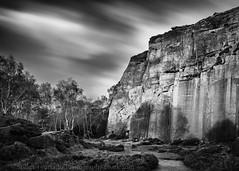 Grey Millstone Quarry (Stuart Feurtado) Tags: 10stop foliage le moody peakdistrict quary longexposure tree millstone cloud nikon rock blackandwhite heather greymillstonequarries cliff d810