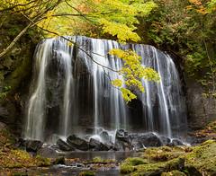 Autumn waterfall (shinichiro*) Tags: è¶éº»é¡ ç¦å³¶ç æ¥æ¬ jp 20161020ds40043 2016 crazyshin nikond4s afsnikkor2470mmf28ged autumn october fukushima japan 裏磐梯 達沢不動滝 滝 201612gettyuploadesp 30148822590