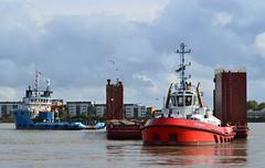 Tugs + Dina Launcher (5) @ Gallions Reach 16-10-16 (AJBC_1) Tags: london ship boat vessel dlrblog england unitedkingdom uk ©ajc northwoolwich eastlondon newham londonboroughofnewham tug tugboat zpbear nikond3200 shipsinpictures kotugsmittowage dutchblue offshoresupportvessel hollandoffshorerederijbv dinalauncher barge submersiblebarge myklebusthaugmanagementas gallionsreach riverthames