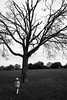 Leafless (pantagrapher) Tags: horner park chicago fall bw ricoh grii