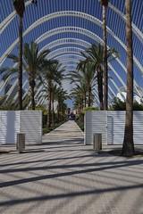 L'Umbracle Arcade (smitchelrific) Tags: calatrava spain valencia artsandsciences ciudad city trees palm arch arcade lumbracle
