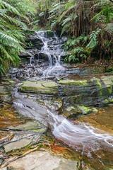 Leura Cascades, Blue Mountains (stephenk1977) Tags: australia newsouthwales nsw katoomba bluemountains nikon d3300 leura cascades waterfall slowshutter handheld