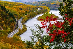 Stand Out (lancevalour) Tags: ifttt 500px fall delaware water gap national park pennsylvania leaves trees