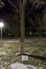 Gherman Titov (Granmuc) Tags: baikonur cosmonaut alley trees