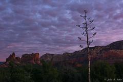 _DSC9174 (jbaker6886) Tags: ahpw arizona cathedralrock sedona colors redrocks sunrise sunset