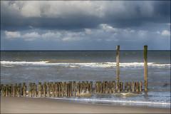 NIEUWVLIET 22F (BAUWENS RENE) Tags: nieuwvliet zeeuwsvlaanderen noordzee holland paysbas nederland strand plage beach cadzand nikon d750 nikfilter