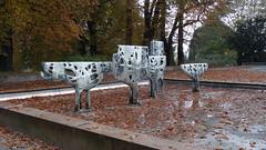 Herbststimmung am Kieler Schlo (Gartenzauber) Tags: kiel herbst schlos schleswigholstein