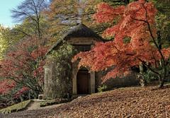 autumn at stourhead 6 (jjays7155) Tags: eos7d sigma1750mm stourhead
