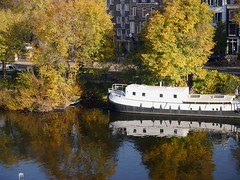 2016.10 - 'Floating Fall in & on the water' - Amsterdam photos, in the sun-light of October- geotagged free urban picture, in public domain / Commons CCO;  city photography by Fons Heijnsbroek, The Netherlands (Amsterdam photos, pictures, foto's - Netherlands) Tags: floatinggarden colors fall autumn urbanfall urbanautumn october trees coloredtrees reflections canals water canalwater waterreflections houseboat amsterdam city urban watercourse canal fonsheijnsbroek photosamsterdam fotoamsterdam amsterdamphotos amsterdamfoto amsterdampictures foto picture publicdomain publiekdomein nocopywright freedownload freeprint printforfree ccophotography freephotos photofree opensourcephotos geotagged thenetherlands dutch photographer dutchphotographer urbanphotographer urbanphotoart urbanphoto dutchphoto dutchphotography urbanphotography commons cc photography amsterdamcity outdoor image impression pic highresolution goodquality printfree cco