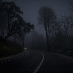 Two lights (Julio Lpez Saguar) Tags: aprobado juliolpezsaguar sintra portugal carretera road niebla mist fog luces lights car coche silencio silence arboles trees