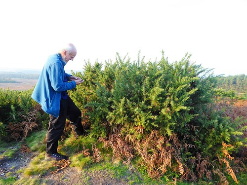 Smudge Gets GPS For Blacknoll Hill