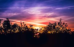 matin bonheur (Davyahoua) Tags: matin matinal rainbow ciel color couleur contre jour canon arbre soleil lev de aube nature beautiful color dream sky canon70d canon2470mm
