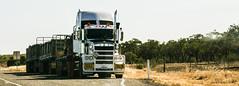 TSV-ISA 438_edited (harry de haan) Tags: harrydehaan australia queensland northqueensland outback truck roadtrain