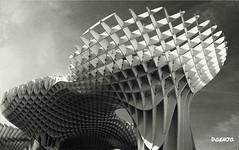 Las Setas (Doenjo) Tags: metropolparasol setas encarnación sevilla arquitectura móvil instagram huaweigx8