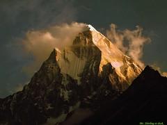 Mount Shivling (sandip23m) Tags: shivling himalaya gangotri tapovan