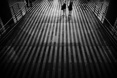 travellers (*ines_maria) Tags: traveller noiretblanc mono monochrome blackandwhite bw city urbanart urban directions people stripes mainstation prahahlavnínádraží praha tschechien prague