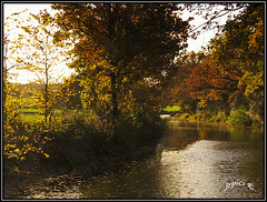 Autumn Breeze. (Picture post.) Tags: landscape nature green water breeze trees sunlight reflections autumn ripples leaves paysage arbre eau canal bends winding