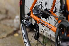 DSC05782NB (csauer75) Tags: mkiroad roadbikes handmadebicycle thismachinekillscarbon lowauthorizeddealer bicycleporn lowsf lowbicycles