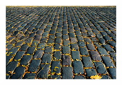cobbles in autumn | Kopfsteinpflaster im Herbst (rainbowcave) Tags: cobbles fall autumn leaves bltter pflastersteine mainz laub sunny sonnig guesswheremainz