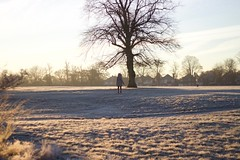 Uxbridge Common (cchana) Tags: lady dogwalker frost cold uxbridgecommon grass trees