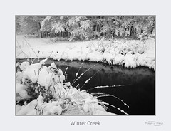 Winter Creek (baldwinm16) Tags: il illinois midwest winter december season snow stream creek bw nature natureofthingsphotography