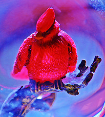 Welcome to my Swirl (forestforthetress) Tags: red color bird nikon cardinal feathers figurine omot