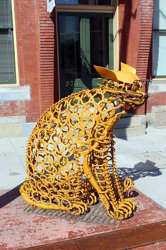 York: Yellow Farm Cat