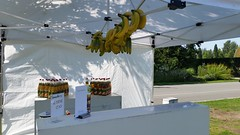 "#hummercatering #mobile #Smoothie #Bannana #Sommerfest #Sommer #sonne  #Smoothiebar #Rietberg #Vkm #spendenaktion http://goo.gl/B2w0Io • <a style=""font-size:0.8em;"" href=""http://www.flickr.com/photos/69233503@N08/20804303612/"" target=""_blank"">View on Flickr</a>"