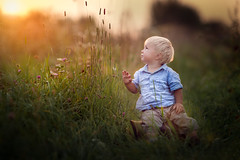high grass (iwona_podlasinska) Tags: boy sun cute grass zeiss canon child flare 5d 28 delicate sonnar 200mm