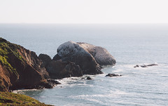 Bird Island (hynden) Tags: ocean sf california ca sea cliff bird island san francisco marin headlands traveling
