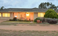 685 Olympic Hwy North, Young NSW