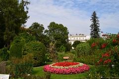 Botanical Garden Krakw (Sandra Kirly Pictures) Tags: poland krakow cracow botanicalgarden ogrdbotaniczny