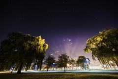 Night (hgielyah) Tags: pink blue trees light sky tree college fog night canon campus stars star student nikon long exposure shadows purple willow d750 rit 14mm naturl 60d
