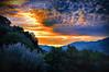 Watching the sunset (* landscape photographer *) Tags: sunset italy tree nature colors alberi clouds europe flickr tramonto nuvole valle natura valley sa sasi nikkor colori paesaggio vita salvo gioia lucania 2015 respiro creazione armonia nikond90 landscapephotographer sinni salvyitaly francavillainsinni