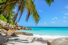 DSC_1191 (NICOLAS POUSSIN PHOTOGRAPHIE) Tags: soleil eau sable bleu coco fin vague plage rocher palmier bois seychelle turquoide