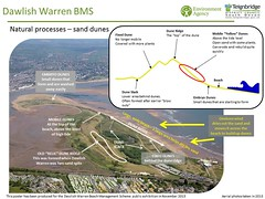 Natural processes –sand dunes (Environment Agency) Tags: warren dawlish