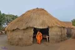 Rohi Desert , Pakistan (TARIQ HAMEED SULEMANI) Tags: travel tourism trekking nikon desert islam ghar sensational khan tariq yar rahim manthar supershot rohi sulemani tariqhameedsulemani
