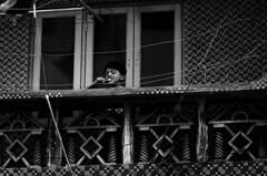@ Parrys, Chennai (Kals Pics) Tags: life boy people india window kid balcony health chennai tamilnadu roi cleanliness brushingteeth cwc parrys goodhabits morningduties rootsofindia kalspics chennaiweelendclickers