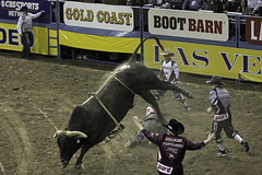 02468720-71-2015 National Finals Rodeo NFR-Bull Fighters-1 (Jim There's things half in shadow and in light) Tags: sports animals america cowboy lasvegas action nevada bullfighter rodeo 2015 rodeoclown nationalfinals thomasandmack