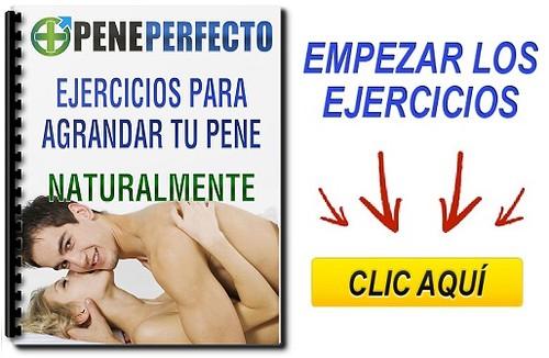 ejercicios peneperfecto