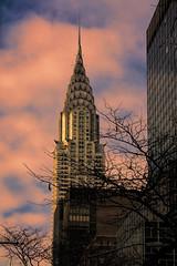 Chrysler building (Mark Chandler Photography) Tags: new york nyc newyorkcity sunset urban color colour building architecture skyscraper canon photography photo dusk centralpark manhattan stock empire chrysler xsi rockerfellercenter markchandler