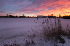 Klarälven in winter (- David Olsson -) Tags: sunset snow cold reed nature clouds river landscape frozen nikon colorful sundown cloudy sweden outdoor vivid karlstad klarälven handheld colourful february fx vr d800 februari värmland wintry 1635 2015 sjöstad 1635mm davidolsson 1635vr
